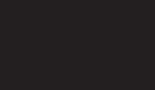Wendt Corporation logo
